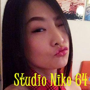 studio niko 64